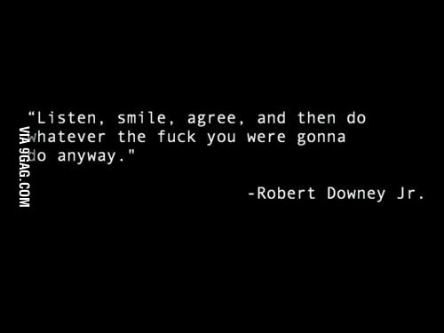 The wise Robert Downey Jr.