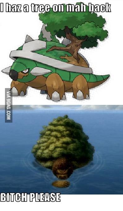 Torterra vs. Lion Turt...