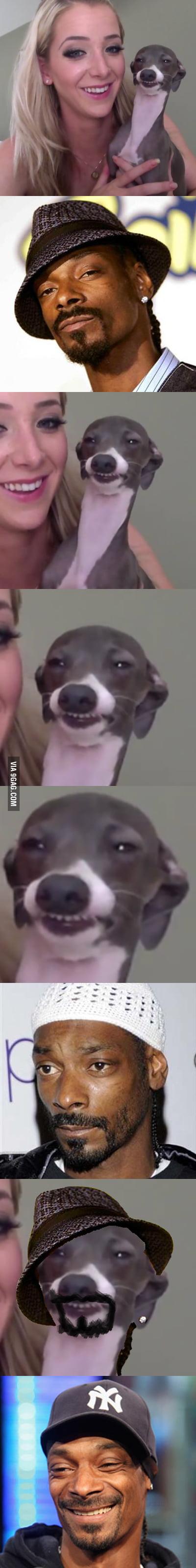 Just Snoop's Dogg