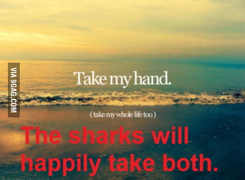 The sharks will take both >:)