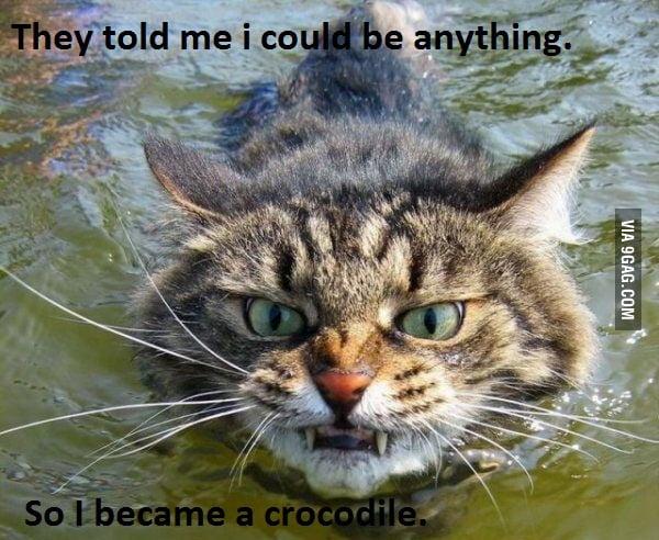 Crocodile Style... Close Enough