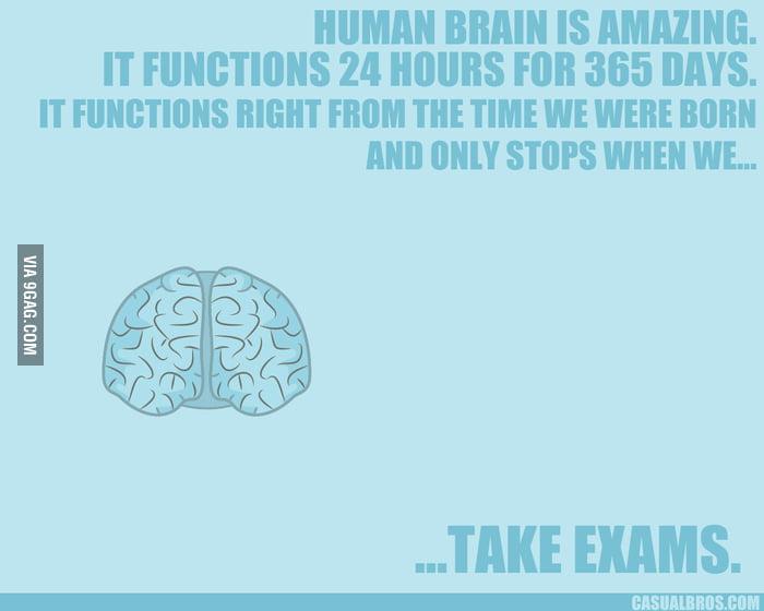 Taking exams.