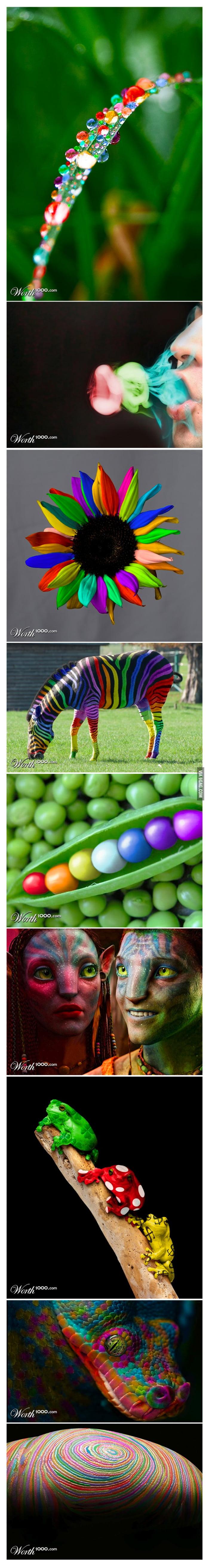 Just a rainbow photoshop contest