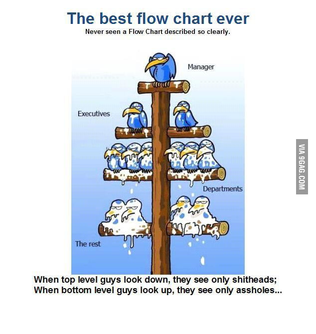 Best flowchart ever...