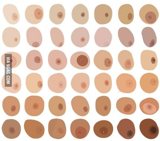 Types Of Womens Nipples 103