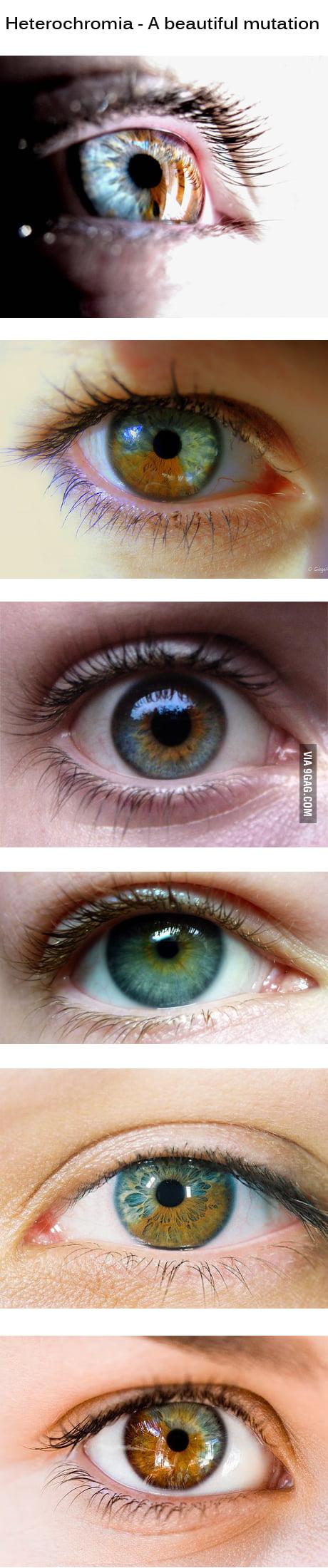 Just a beautiful mutation