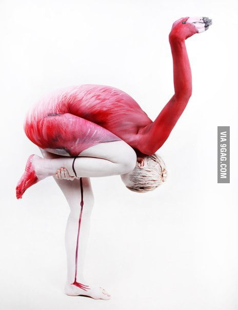 Just a flamingo, wait... WHAT?????