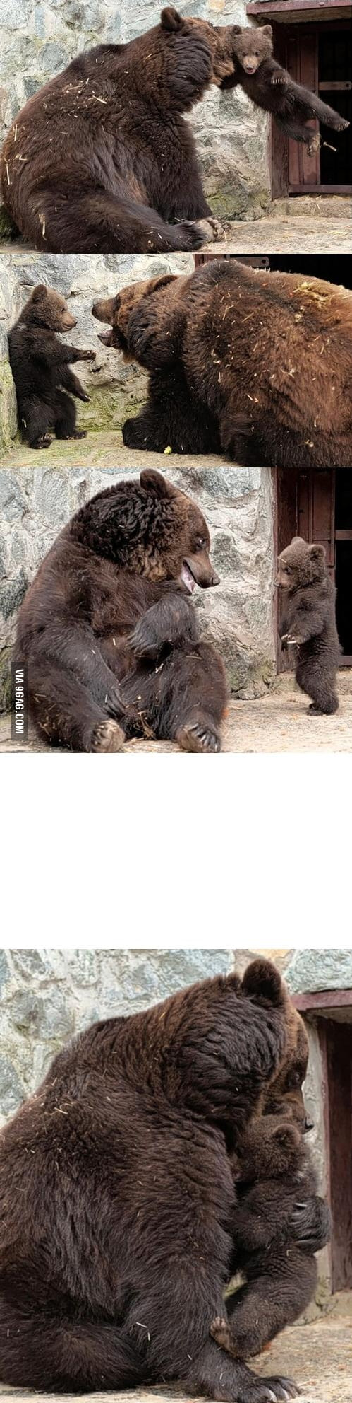 Parenting level: bear