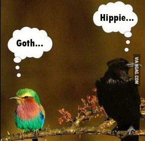 Goth vs Hippie