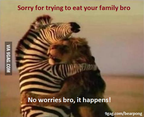 Animal Bro Code