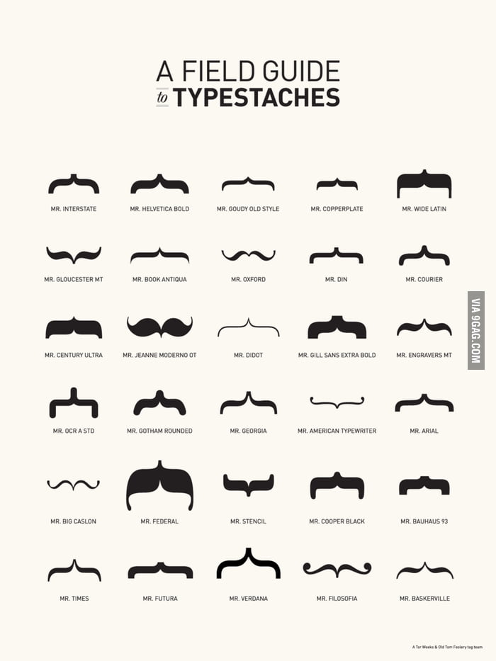 Typestaches