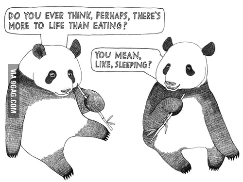 Just Pandas.