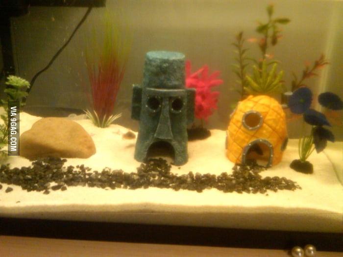 Aquarium Win!