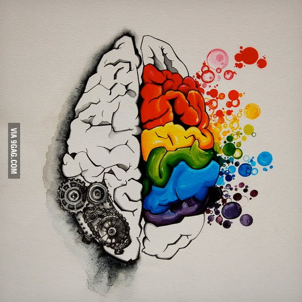 True story about the brain