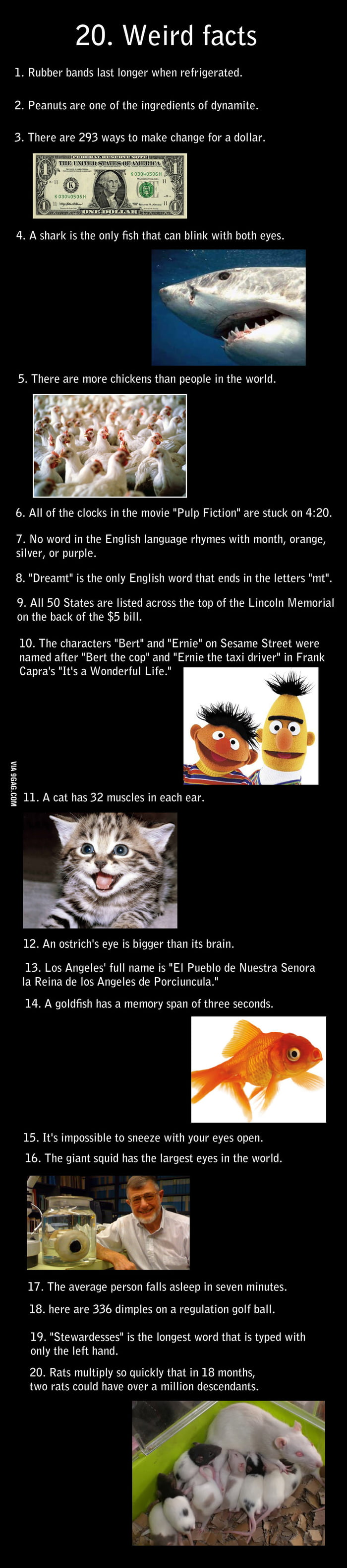20 insane facts!