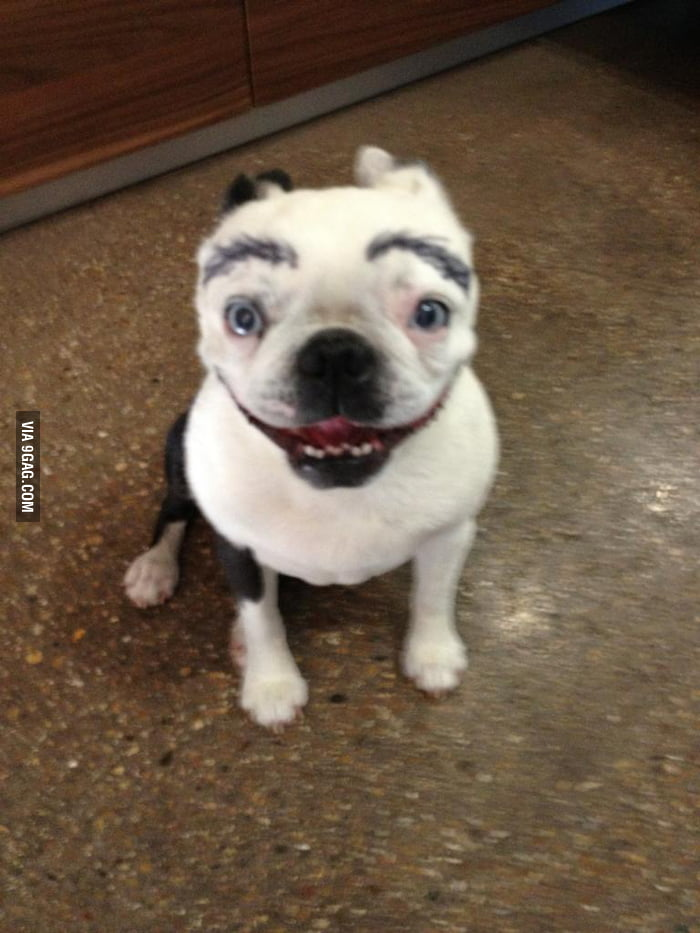 Sharpie Eyebrows