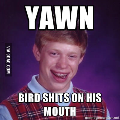 Suddenly bird poo