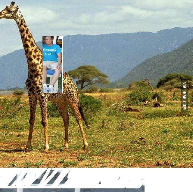 Photoshop like a boss