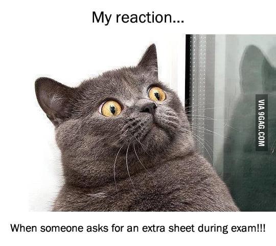 This Always Happens