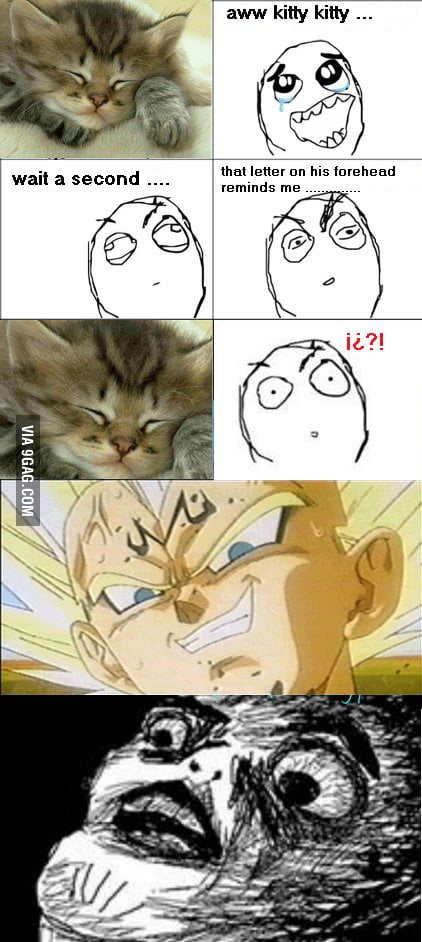 Monster Vegeta kitten