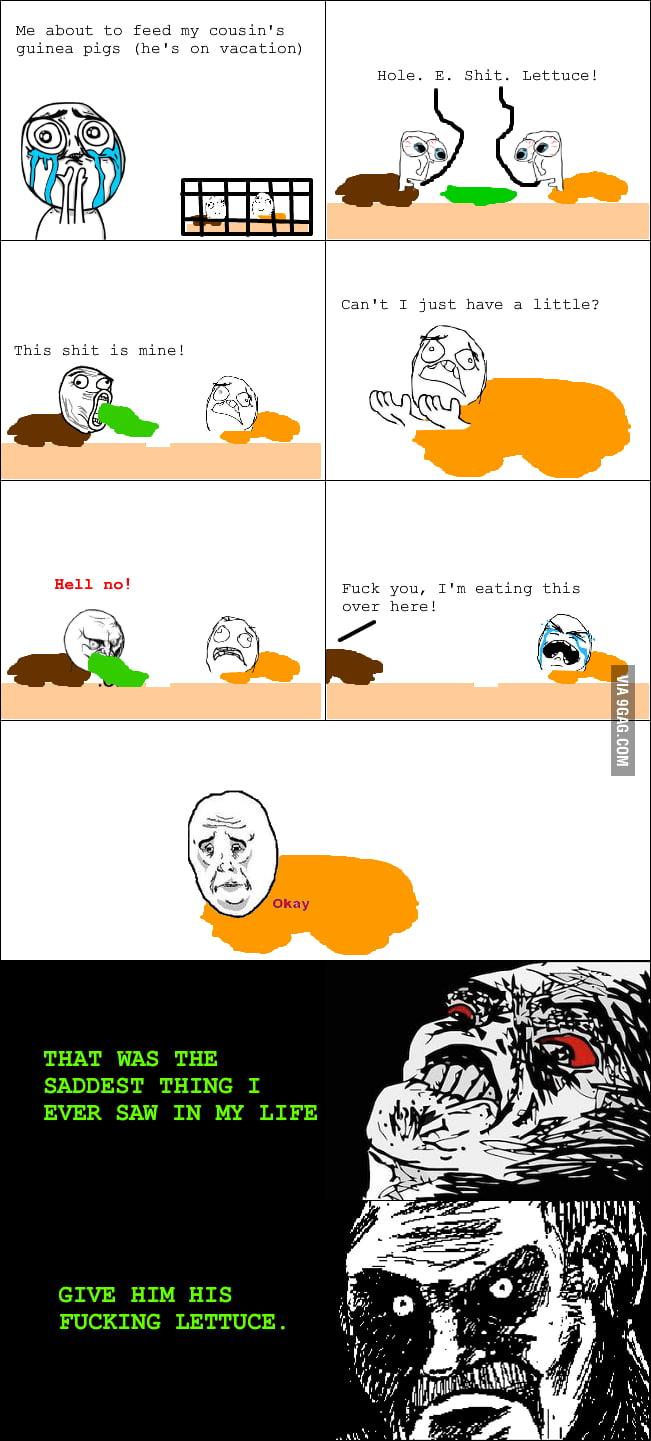 Guinea Pig Rage