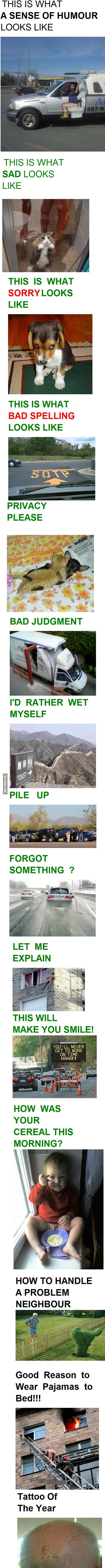 Geniuses!!