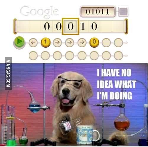 Google WTF
