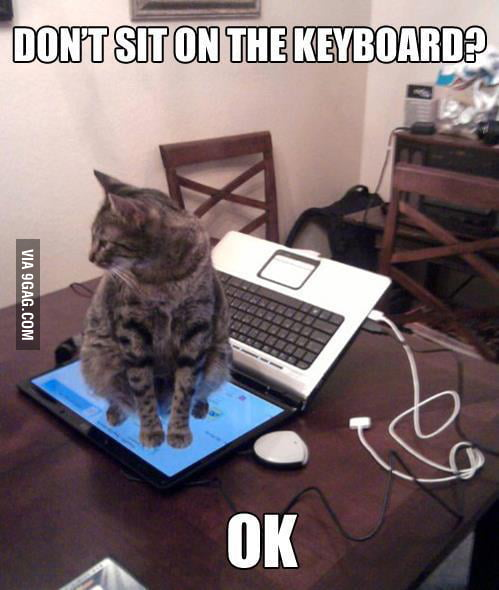 Don't sit on the keyboard