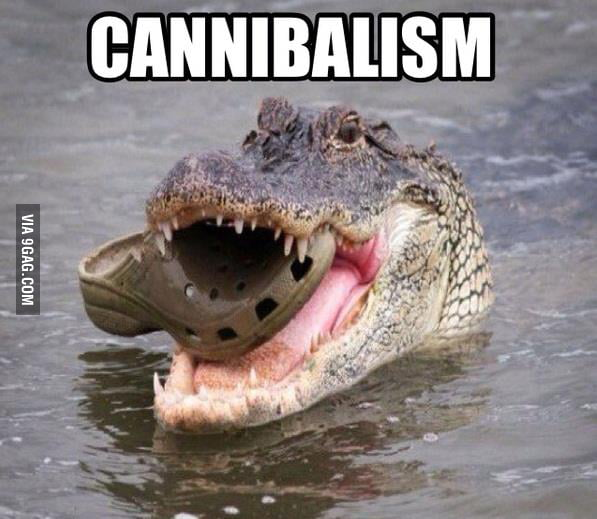 CANNIBALISM LEVEL: OVER 99999