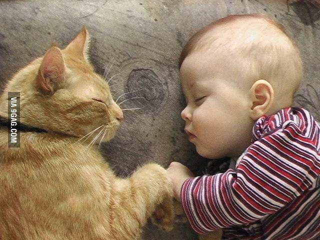 Sleeping Fist Bump