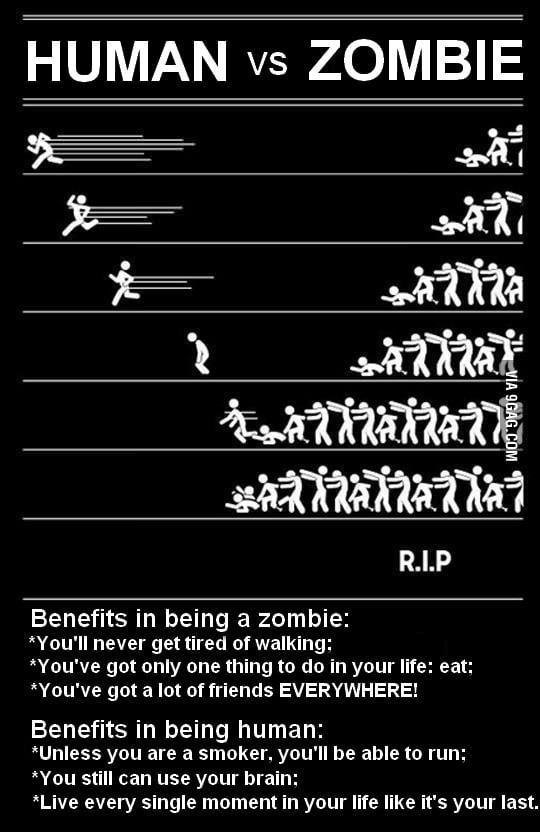 Human vs Zombie