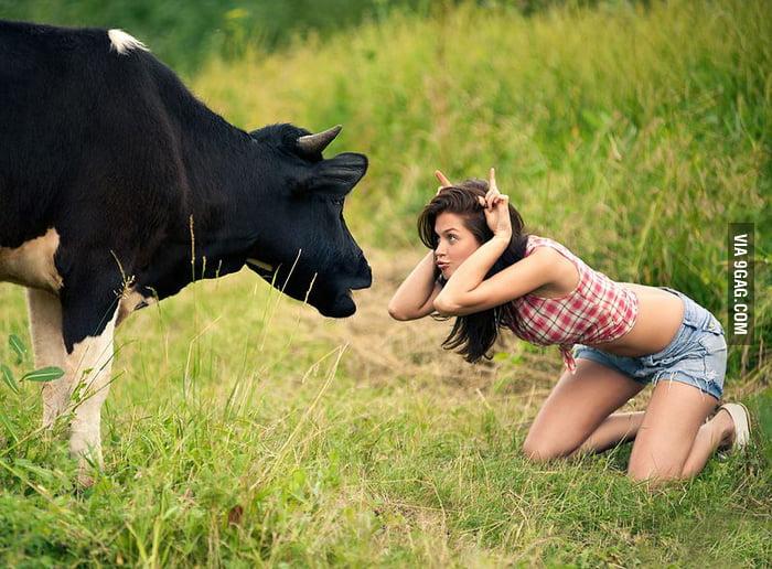 Cow Vs. Girl