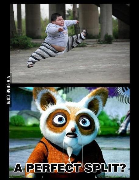 The reak kung-fu panda