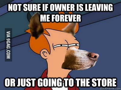 Dog Futurama Fry