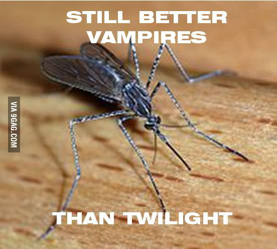 Just mosquito...