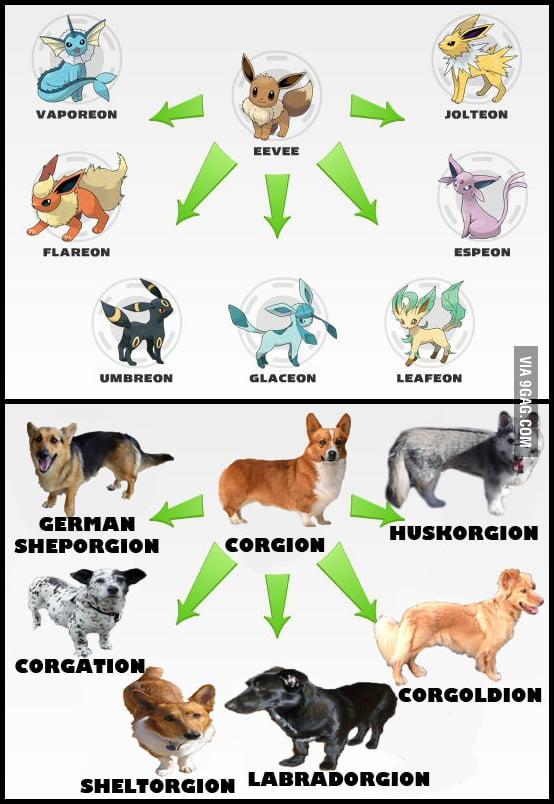 Dog Pokemon Names