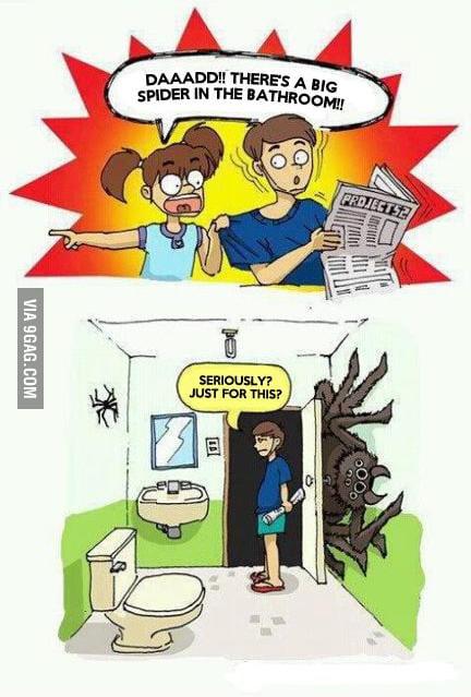 Big spider in bathroom 9gag for Bathroom 9gag