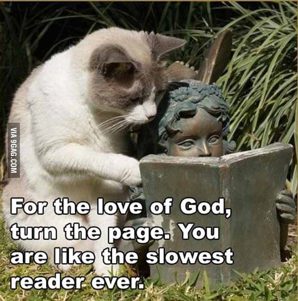 Slowest reader ever