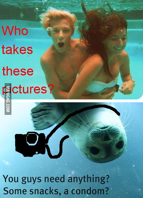 Who takes these pictures?