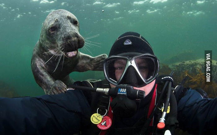 Cutest photobomb ever!