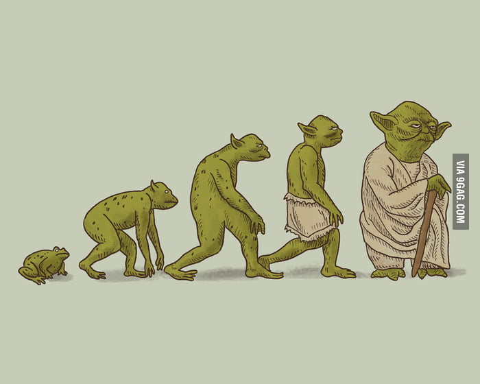 Evolution of Yoda