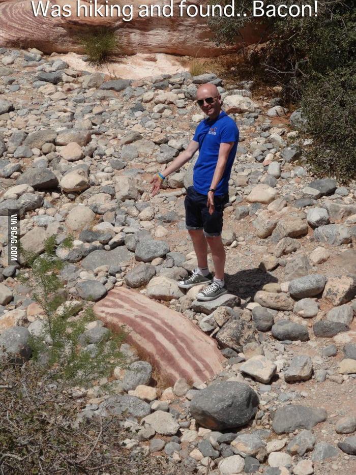 Bacon everywhere