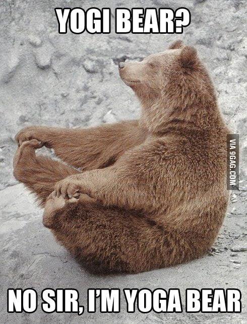 Yogi Bear?