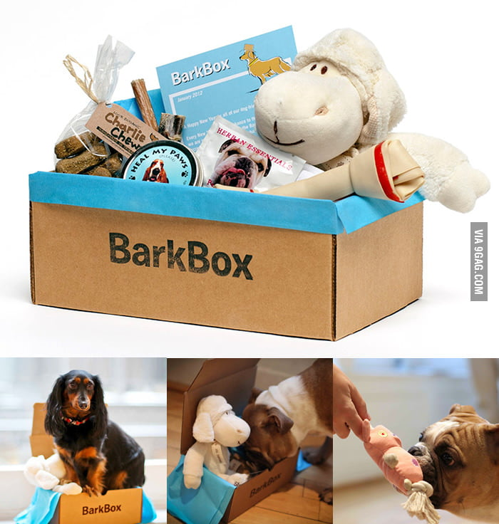 I think my dog will love me more if I give him this BarkBox.