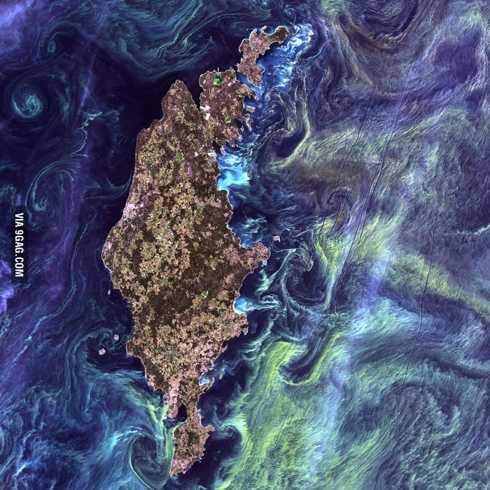 "Gotland, Sweden, looks like ""Starry night"" from space"