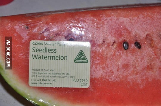 Doesn't look seedless to me