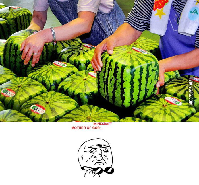 Minecraft Watermelons...!