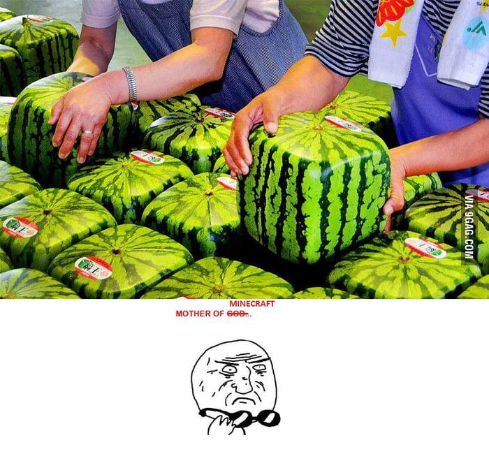 Minecraft Watermelons...!