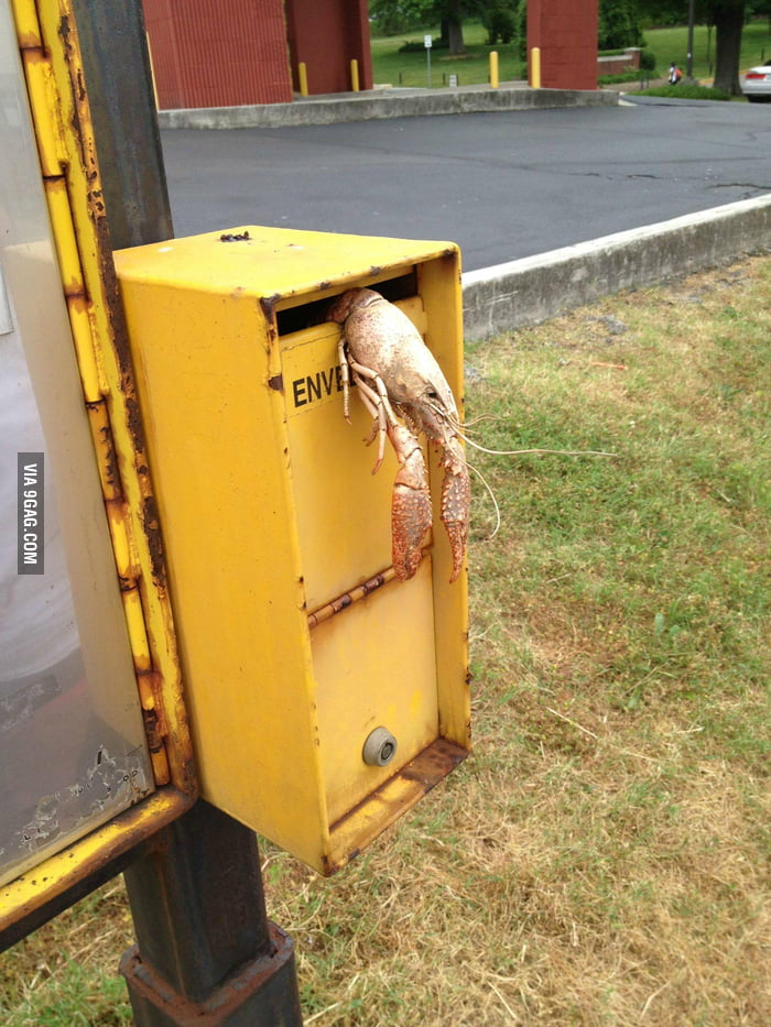So Red Lobster delivers now
