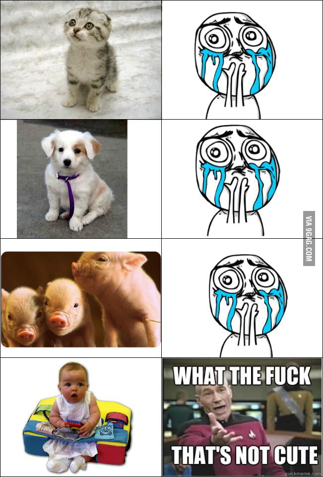 Comparing between animals and babies